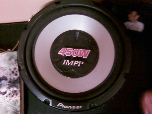 12 Inch pioneer 450w impp