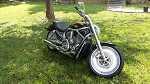 2004 Harley-Davidson vrod vrsca