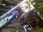 1999 Harley-Davidson softal